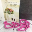 Book - Decora - Sugar flowers Spring, incl. 8 cutters