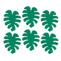 AH - Décoration en sucre feuilles tropicales, 6 pièces
