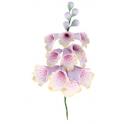 Culpitt - Bouquet Digitale pourprée, env. 12 cm