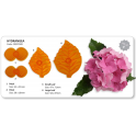 JEM Hydrangea cutter set, 4 pieces